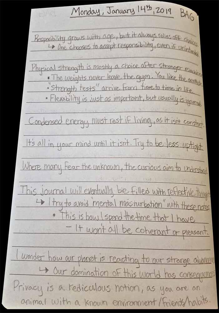 Brandon Grisham, Bagrisham, Internet, Notes, January, page 11