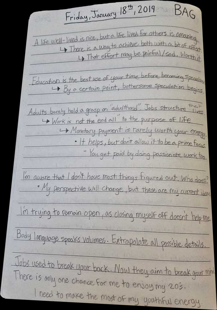 Brandon Grisham, Bagrisham, Internet, Notes, January, page 15